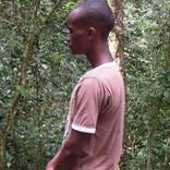 Hory Udzungwa